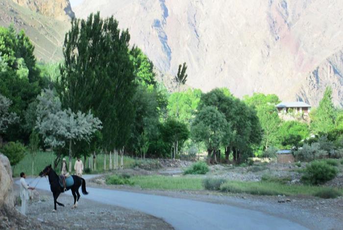 YES-Pak-river-horse